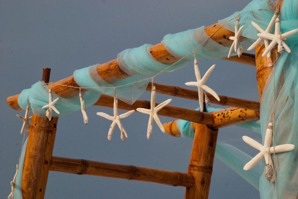 Seashells decorations for a wedding